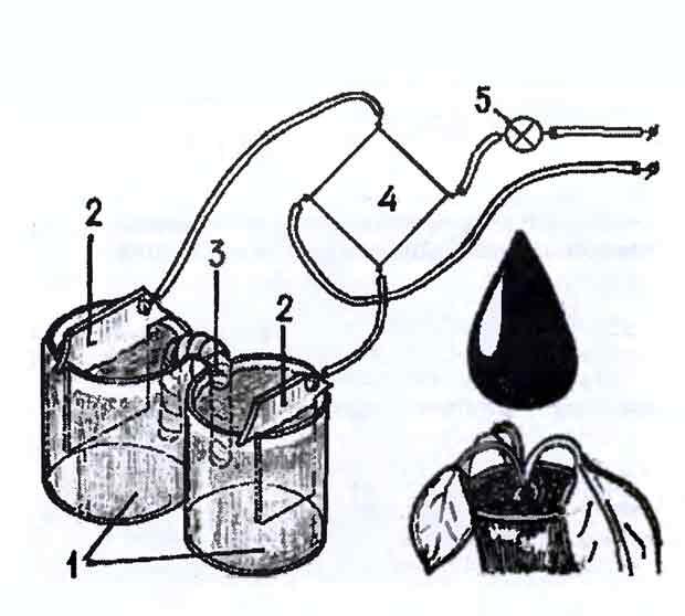 Как сделать активатор воды своими