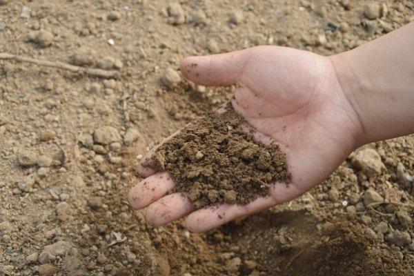 удобрение, земля